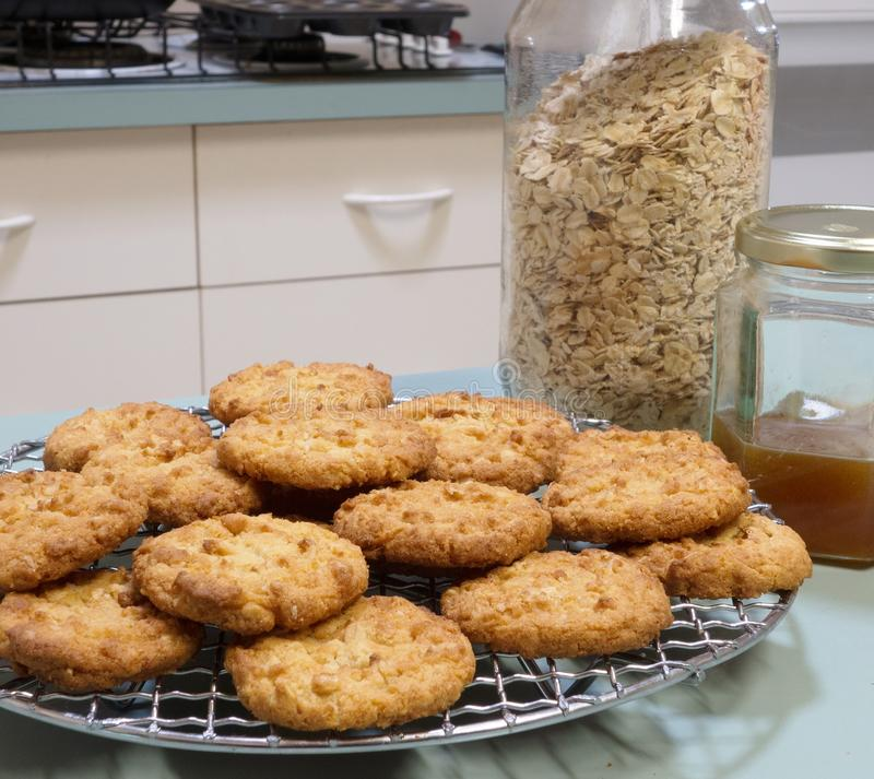 Anzac Biscuits Cooling On Wire kugge. royaltyfri foto