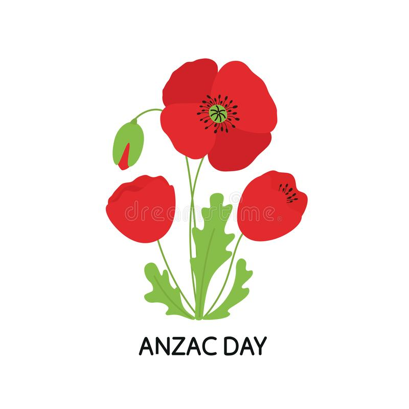 ANZAC DAY. Bouquet of poppy flowers. Vector illustration stock illustration