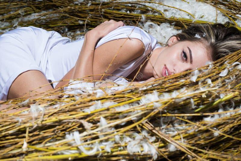Anzeige, Zeitschrift Attraktives M?dchen mit perfekter Haut Sexy Frau mit perfektem Make-up Weibliches Sch?nheitsantlitzkonzept stockfotos