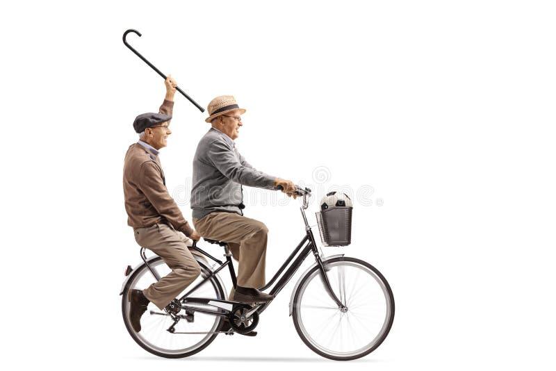 Anziani allegri con una canna e un calcio che guidano un toget della bicicletta fotografia stock libera da diritti