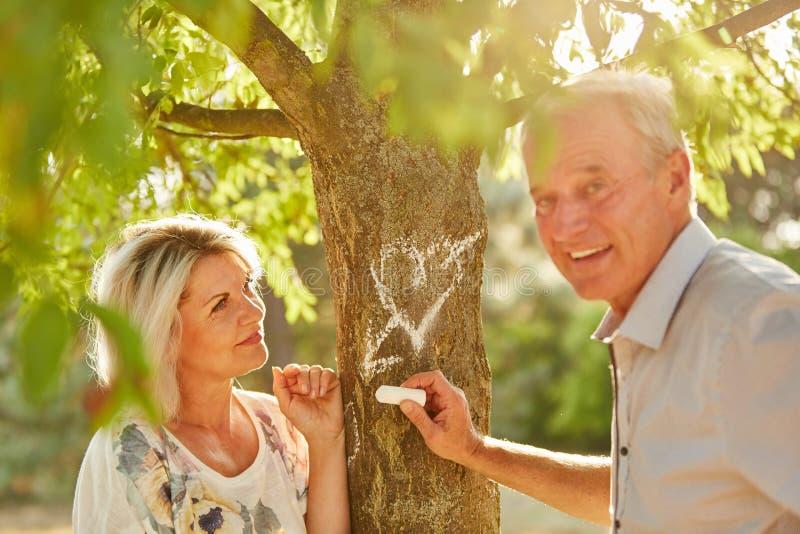 Anziani che drwaing un cuore con gesso su un albero immagini stock libere da diritti