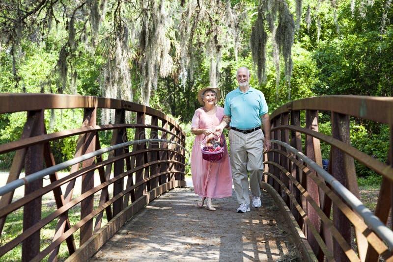 Anziani che vanno per il picnic fotografia stock