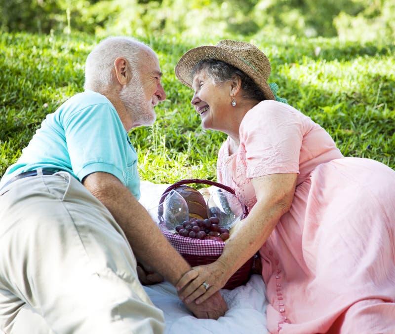 Anziani di picnic - flirtando immagine stock