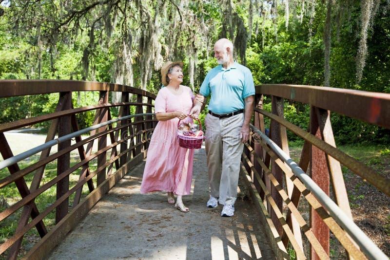 Anziani di vacanza sul picnic fotografie stock libere da diritti