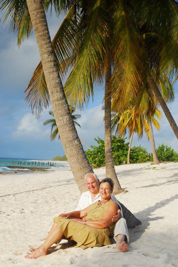 Anziani felici 11 immagine stock