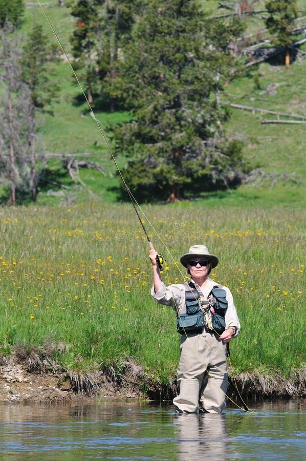 Anziano attivo che flyfishing immagini stock