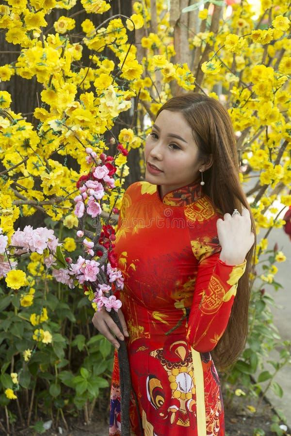 Ao戴越南全国礼服 免版税图库摄影