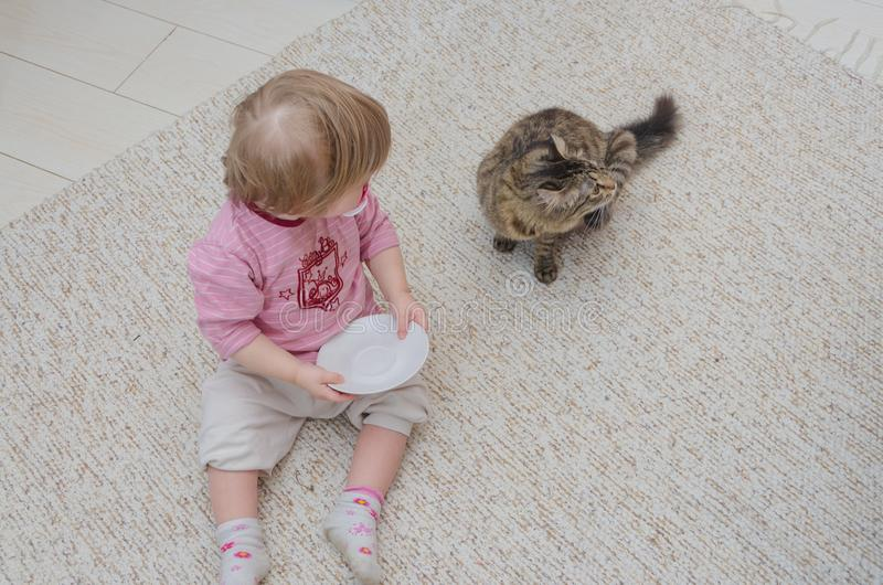 Ao lado do gato no assoalho senta uma criança, a menina quer à taxa imagens de stock
