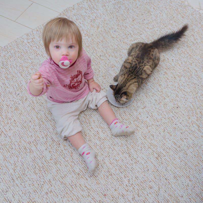 Ao lado do gato no assoalho senta uma criança, a menina quer à taxa fotografia de stock