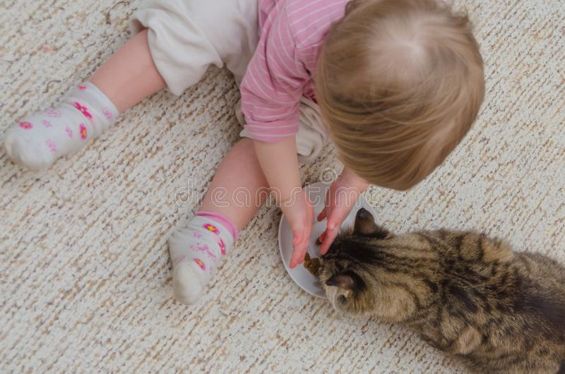 Ao lado do gato no assoalho senta uma criança, a menina quer à taxa imagem de stock royalty free