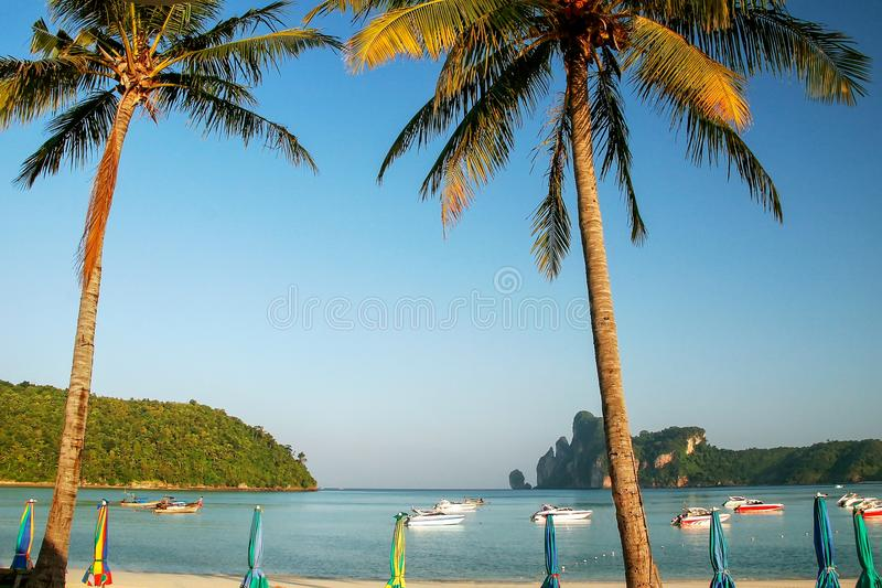 Ao Loh Dalum Strand op Phi Phi Don Island, Krabi-Provincie, Thaila stock fotografie