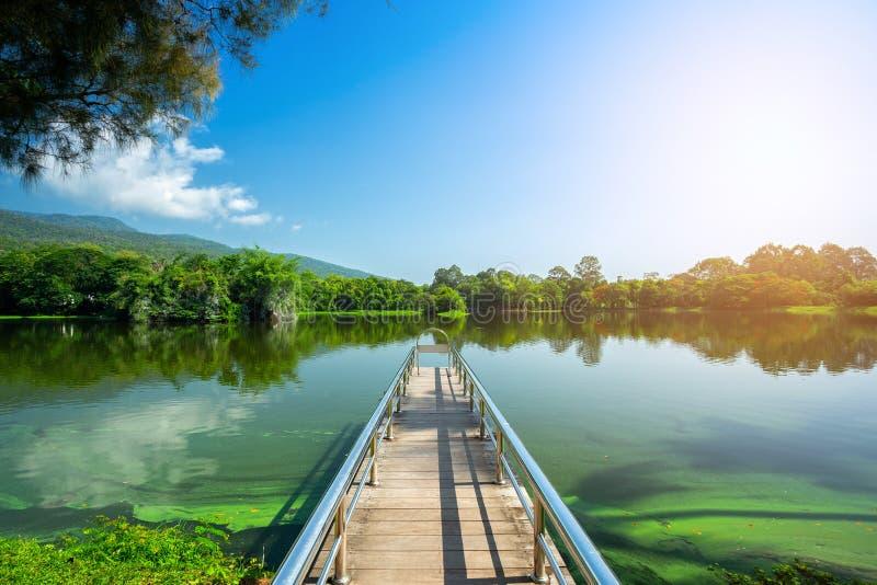 Ao longo da opinião da paisagem da estrada no fundo florestado do céu azul da montanha de Ang Kaew Chiang Mai University imagem de stock royalty free