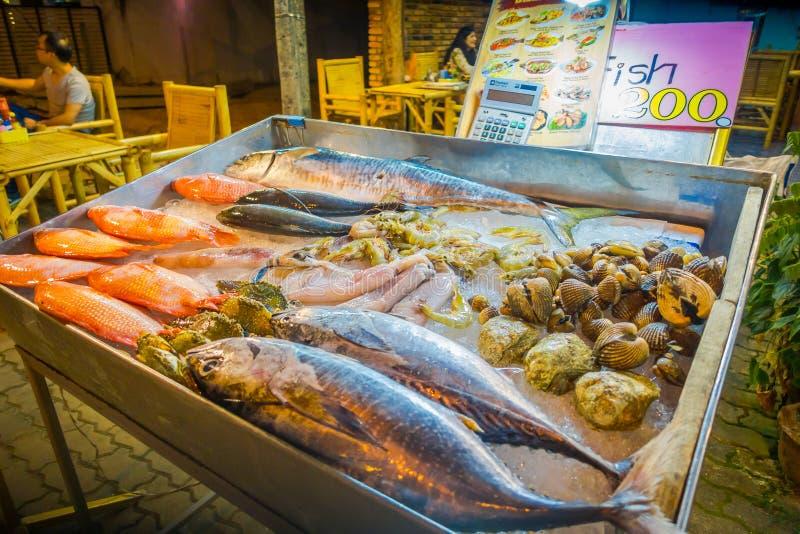 AO NANG TAJLANDIA, MARZEC, - 23, 2018: Zamyka up asortowani morscy zwierzęta, łowi, łuska, kałamarnica, krab nad kruszcową tacą obrazy stock