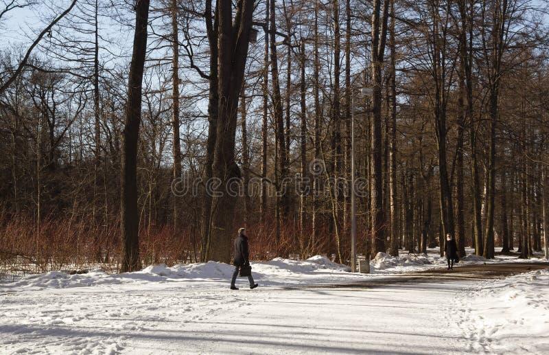 Ao princípio de abril havia muita neve no parque fotografia de stock
