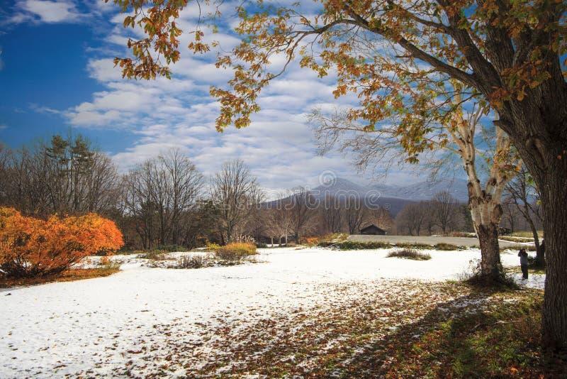 Aomori prefektura, Tohoku region, Japonia z ładnym tłem obraz royalty free