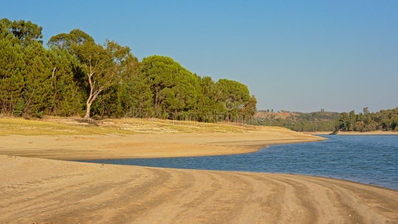 aong della vegetazione della macchia la spiaggia del lago Montargil, Portalegre, Portogallo fotografie stock