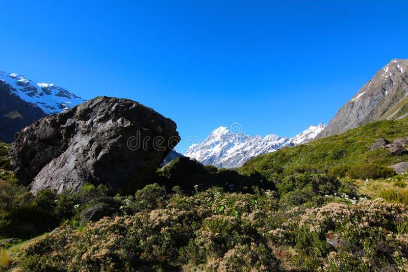 Aoraki, góra Cook/, Nowa Zelandia zdjęcia stock