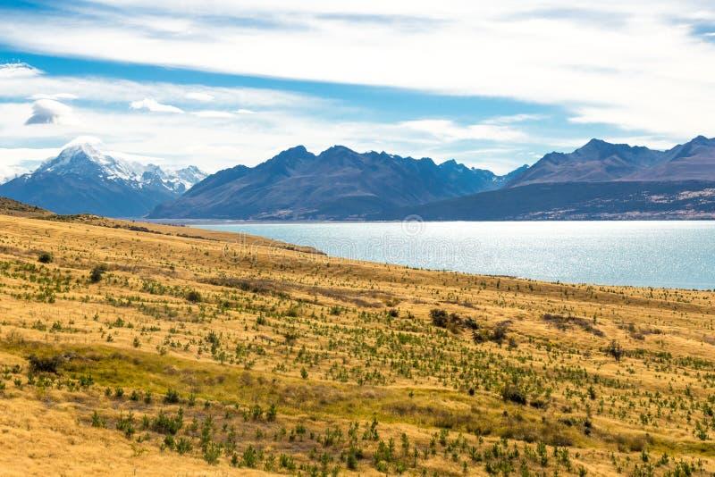 Aoraki monteringskock National Park, Nya Zeeland royaltyfria bilder
