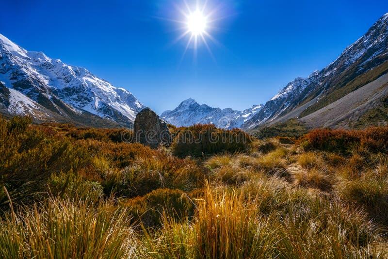 Aoraki zet Cook en Hooker Valleispoor, Zuideneiland, Nieuw Zeeland op stock foto's