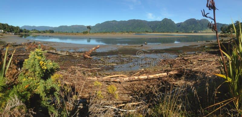 Aorere linia brzegowa w Collingwood i rzeka, Południowa wyspa, Nowa Zelandia zdjęcie royalty free