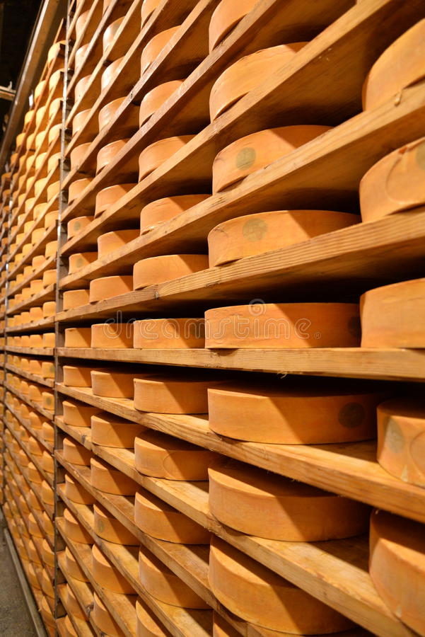 Free Aosta Valley Fontina Italian Cheese. Traditional Cave Aging Storage. Stock Image - 82986641