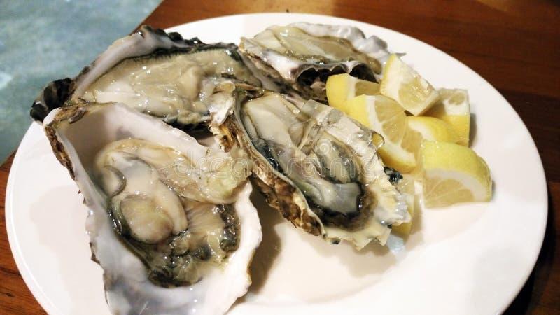 Apéritif frais de l'Asie de moule d'aneth de citron de fruits de mer d'huître image stock