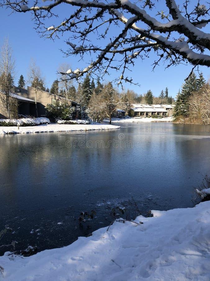 Após a neve o lago congelado imagem de stock