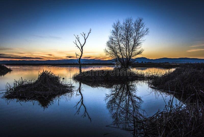 Após o por do sol, reserva natural do nacional de Sacramento imagem de stock royalty free