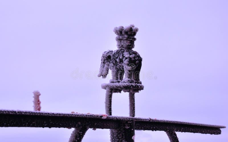 Após o vento e a neve que desejam o desejo dianteiro foto de stock royalty free