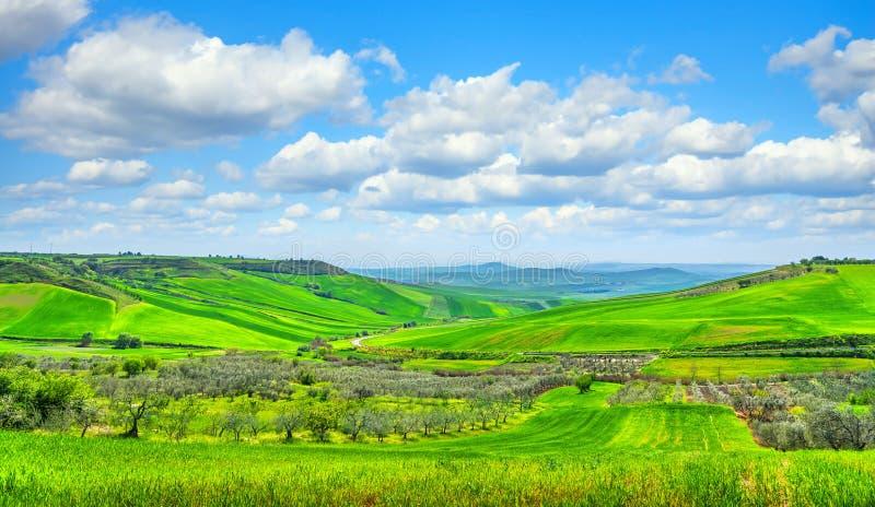 Apúlia paisagem rural oliveira e paisagem montanhosa Poggiorsini, Itália fotografia de stock