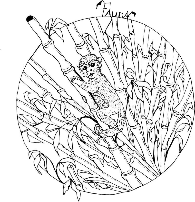 Apa i en bambuskog royaltyfri illustrationer