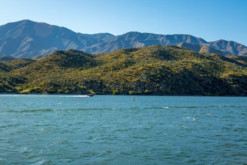 Apache湖Landscpaes在亚利桑那 库存照片