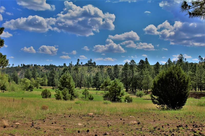 Apache Sitgreaves National Forests, Arizona, United States. Scenic landscape view of the Apache Sitgreaves National Forests, located in east central Arizona royalty free stock photos
