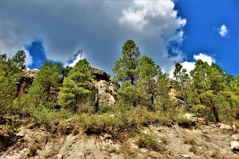 Apache Sitgreaves National Forests, Arizona, United States. Scenic landscape view of the Apache Sitgreaves National Forests, located in east central Arizona royalty free stock photography