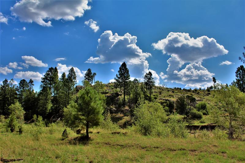 Apache Sitgreaves National Forests, Arizona, United States. Scenic landscape view of the Apache Sitgreaves National Forests, located in east central Arizona stock image