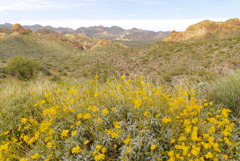 Download Apache Trail stock image. Image of arizona, cliff, superstition - 21739543