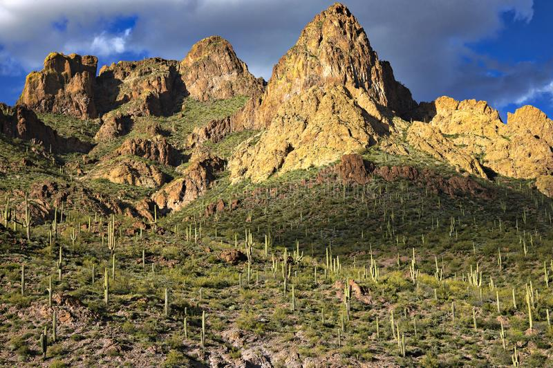 Apache Trail. Buttes and Saguaros along Apache Trail in Arizona royalty free stock photography
