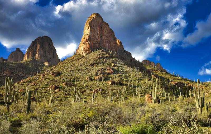 Apache Trail. Buttes and Saguaros along Apache Trail in Arizona stock images