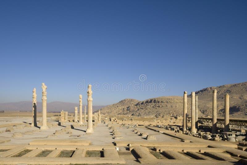 apadana pałac persepolis zdjęcie royalty free