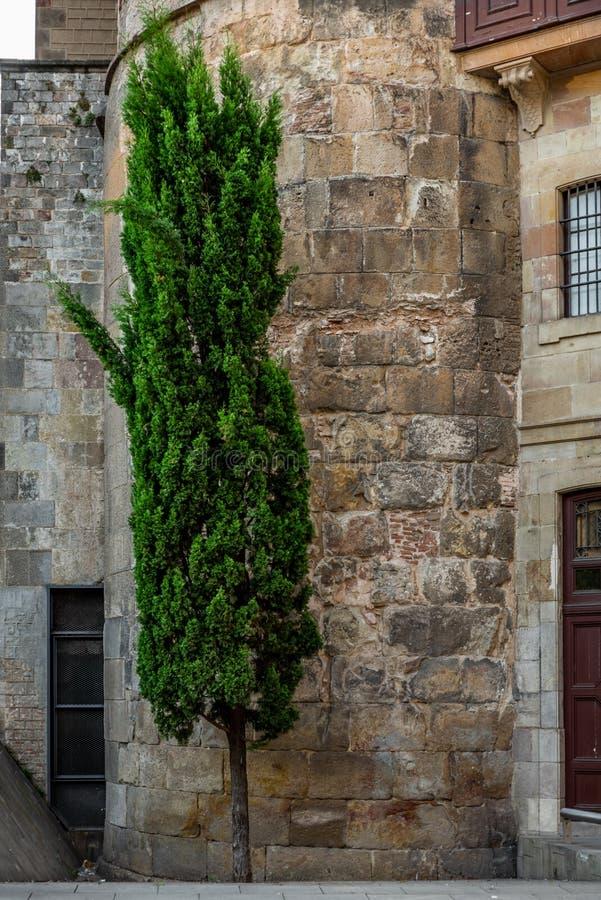 Apaisez les rues étroites dans le quart gothique de Barcelone en m image libre de droits