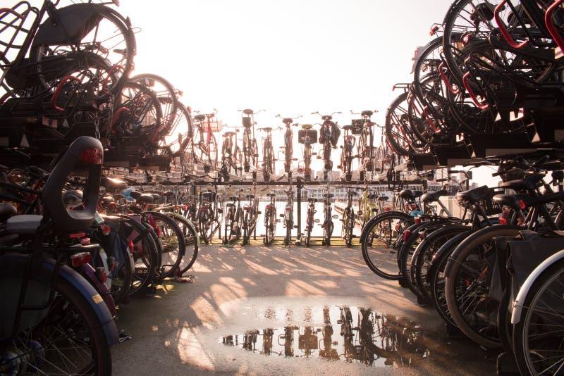 Aparcamiento de la bici en Amsterdam durante tiro azul de la hora contra el sol con un poddle del agua en frente foto de archivo libre de regalías