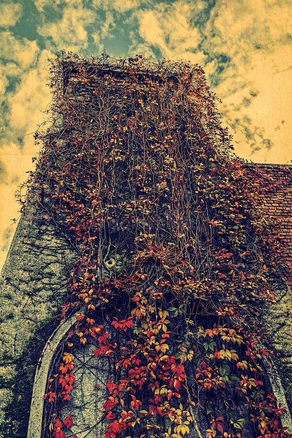 Apariencia vintage con caída de la vegetación en una torre imagenes de archivo