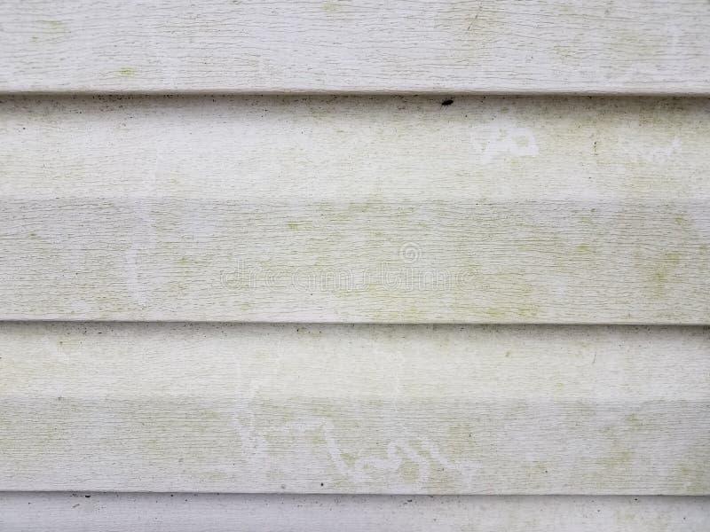 Apartadero casero blanco sucio o asqueroso con las algas imagen de archivo