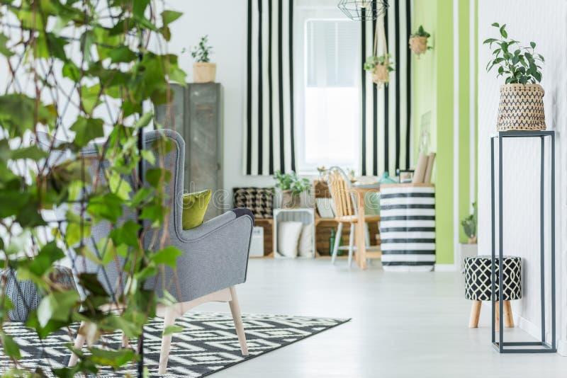 Apartamento na moda com plantas verdes imagem de stock