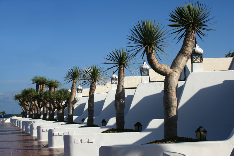 Apartamentos e palmeiras imagens de stock