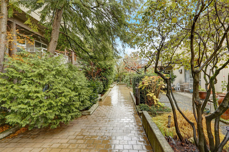 Apartment building exterior in Bellevue. Apartment building/condo home exterior in Bellevue, rainy paved walkway surrounded by green bushes and trees. Northwest royalty free stock image