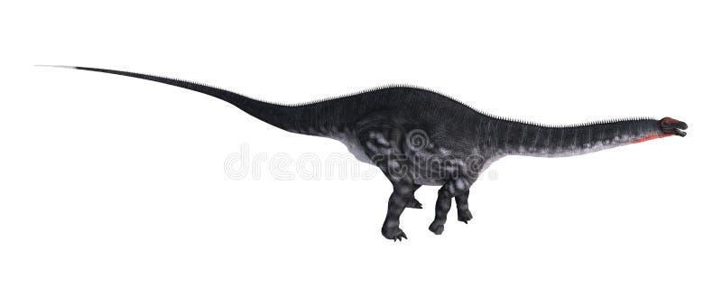Apatosaurus do dinossauro da rendição 3D no branco ilustração stock