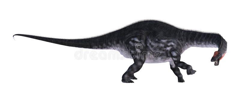 Apatosaurus do dinossauro da rendição 3D no branco ilustração do vetor
