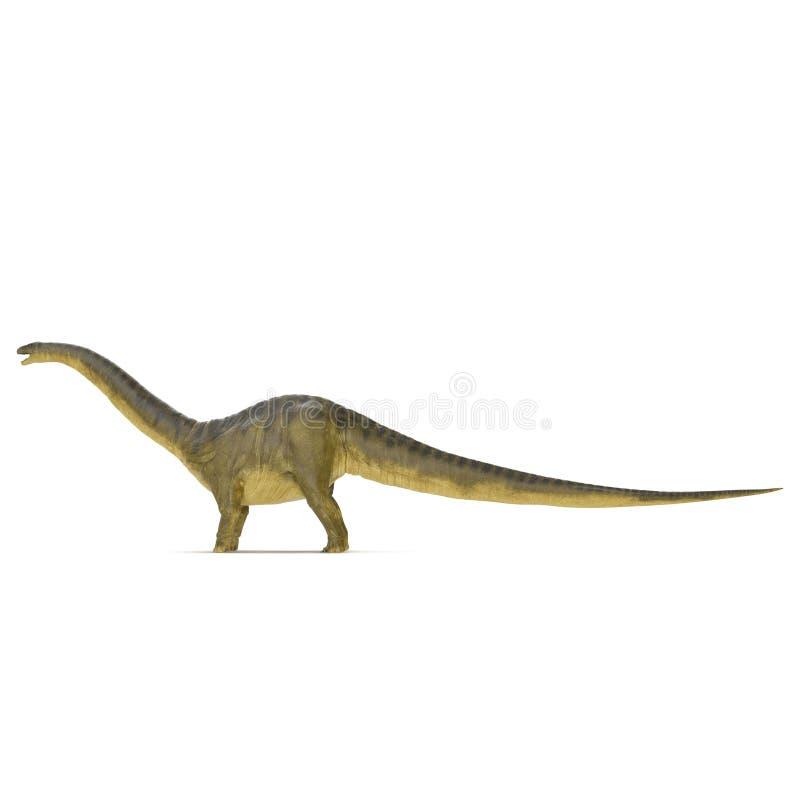 Apatosaurusdinosaurie på vit Slapp fokus illustration 3d stock illustrationer