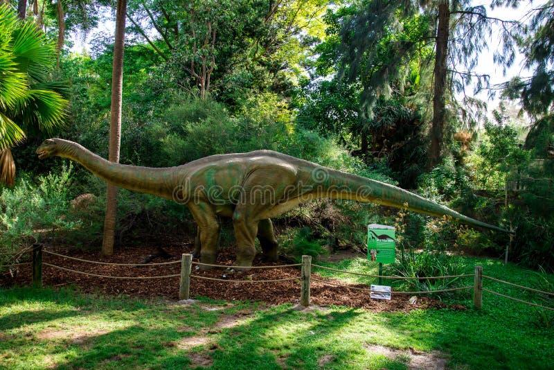 Apatosaurusskärmmodell i den Perth zoo arkivfoto